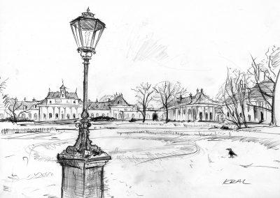 Schloßpark Pillnitz bei Dresden