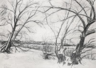 Bäume im Schnee | Prießnitzmündung Dresden